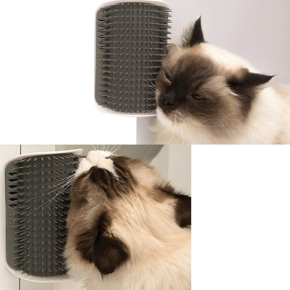 Cat scratching against self groomer