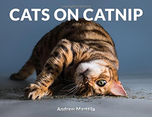 Cover of book with cat rolling around in catnip