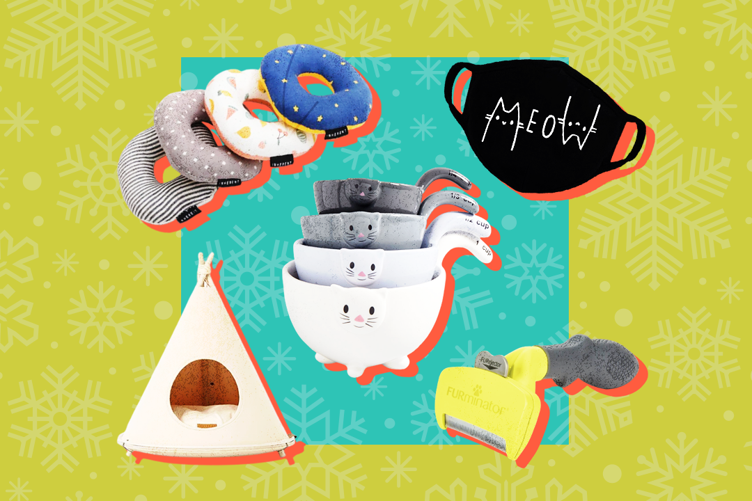 Cat toys, mask, tent, measuring cups, and brush on green and blue snowflake background