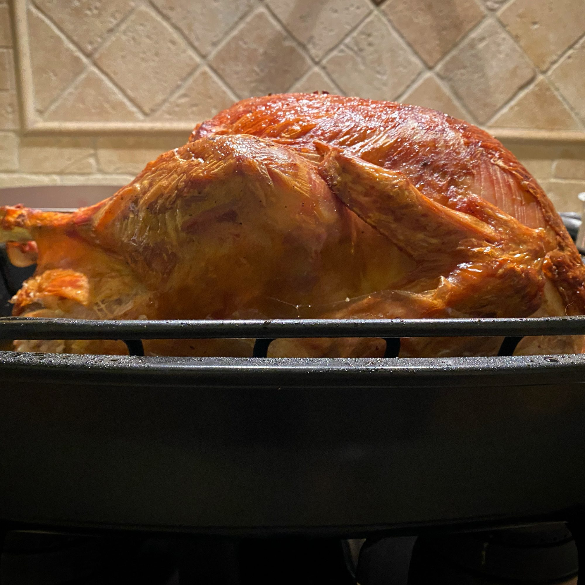 side view of a golden-brown turkey in a roasting pan