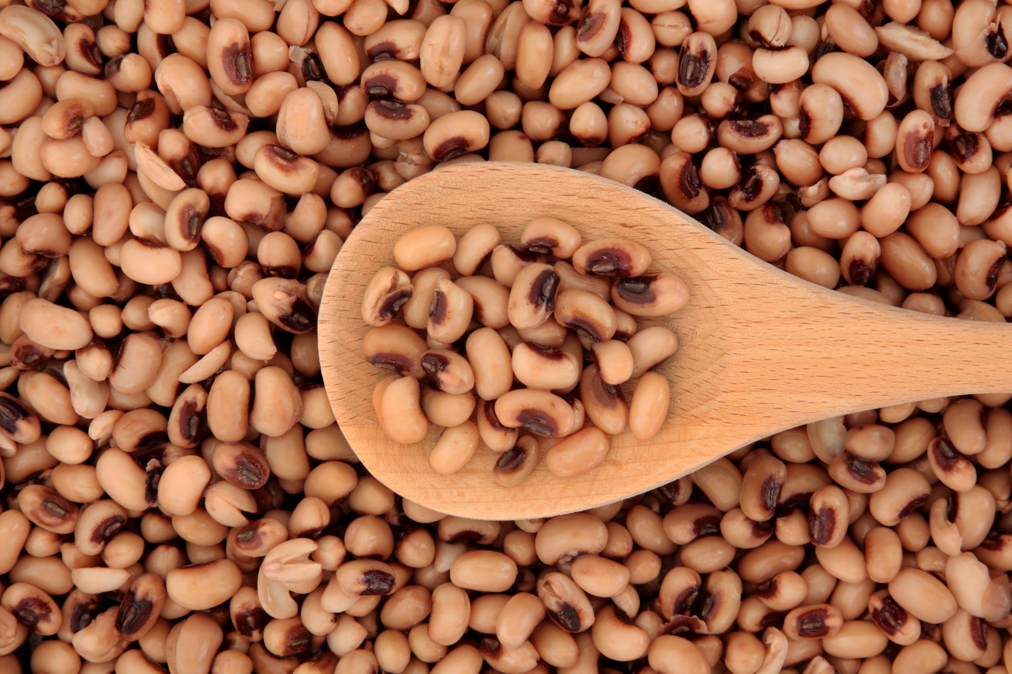 cooked black-eyed peas in wooden spoon