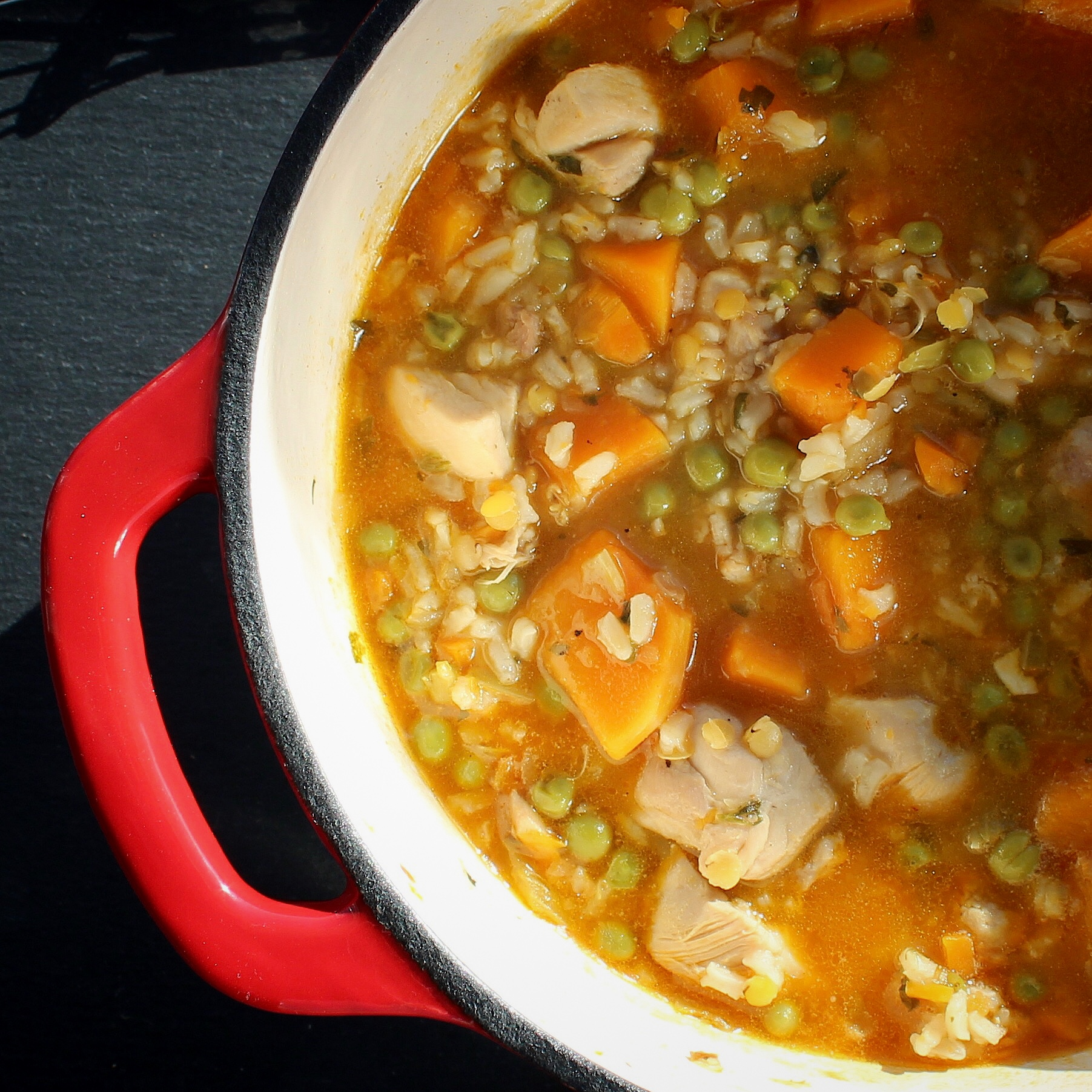 Chicken Stew with Rice and Winter Squash