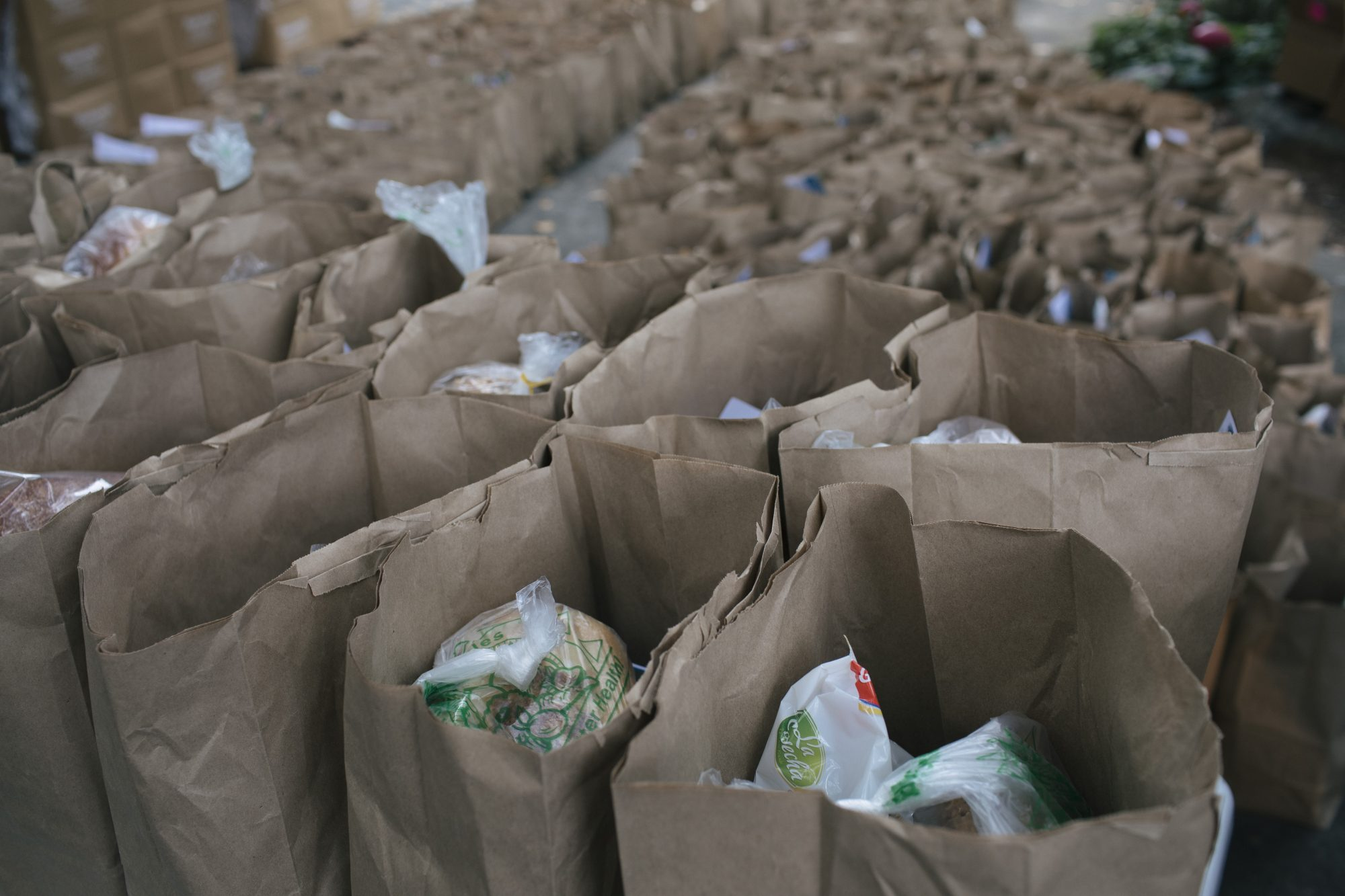 paper bags filled with food donations