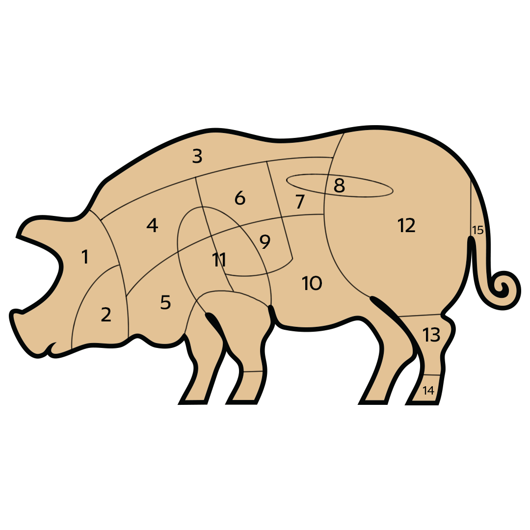 illustrated guide to cuts of pork