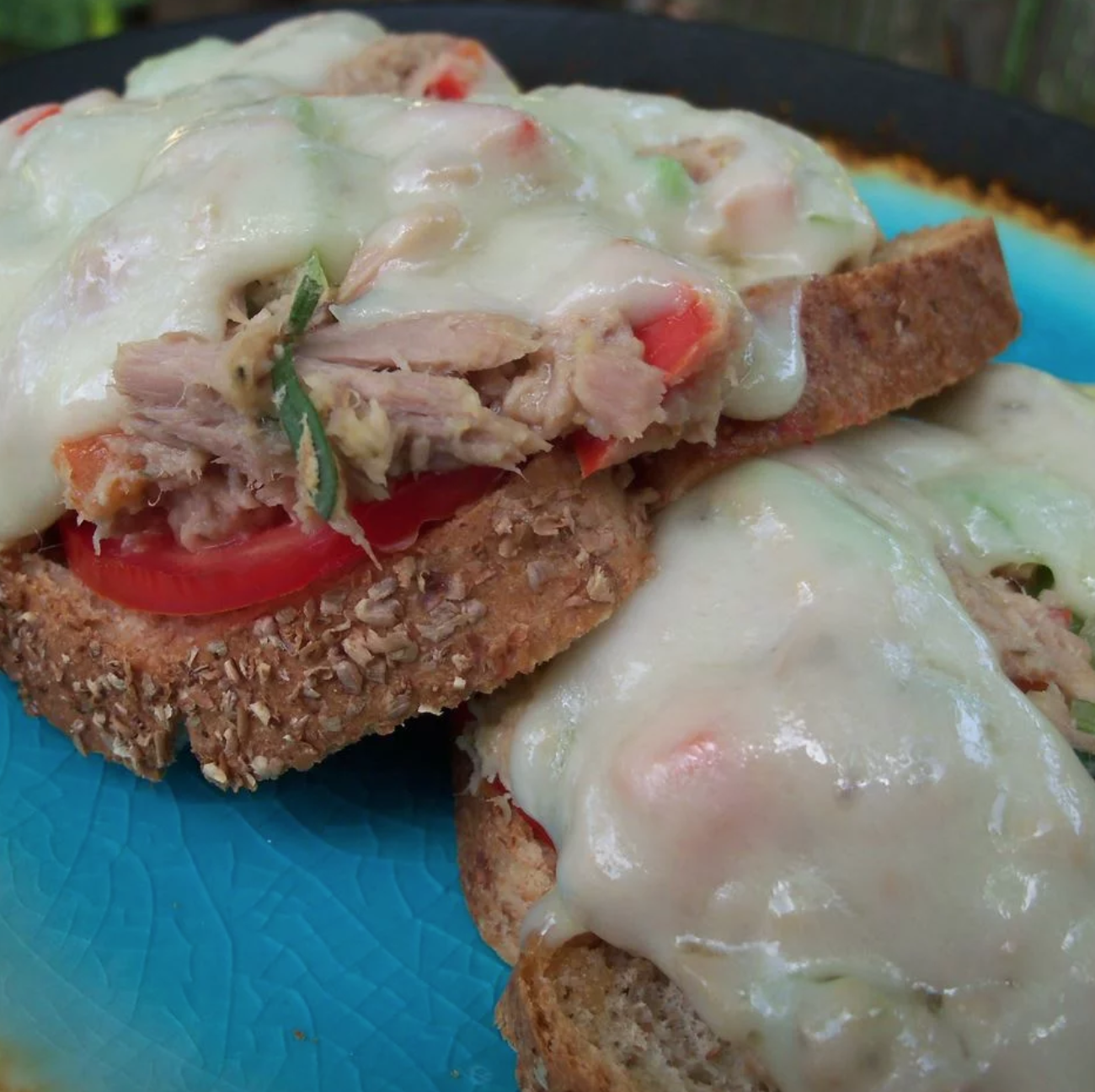 This healthier alternative to the traditional mayo-packed tuna sandwich, seasoned with fresh oregano and fresh rosemary, is topped with red onions and green chile peppers.