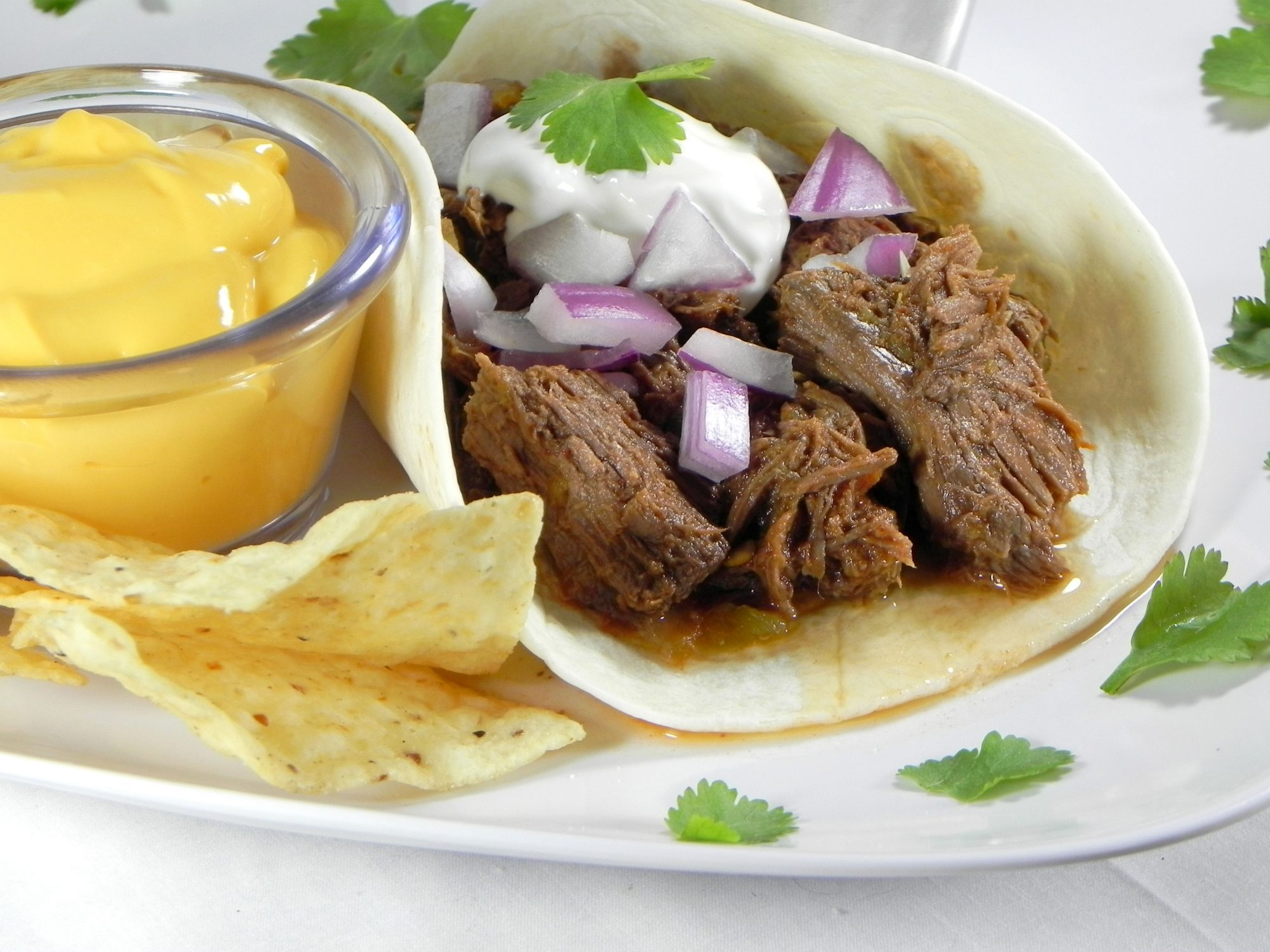 Charley's Slow Cooker Mexican Style Meat by Soup Loving Nicole