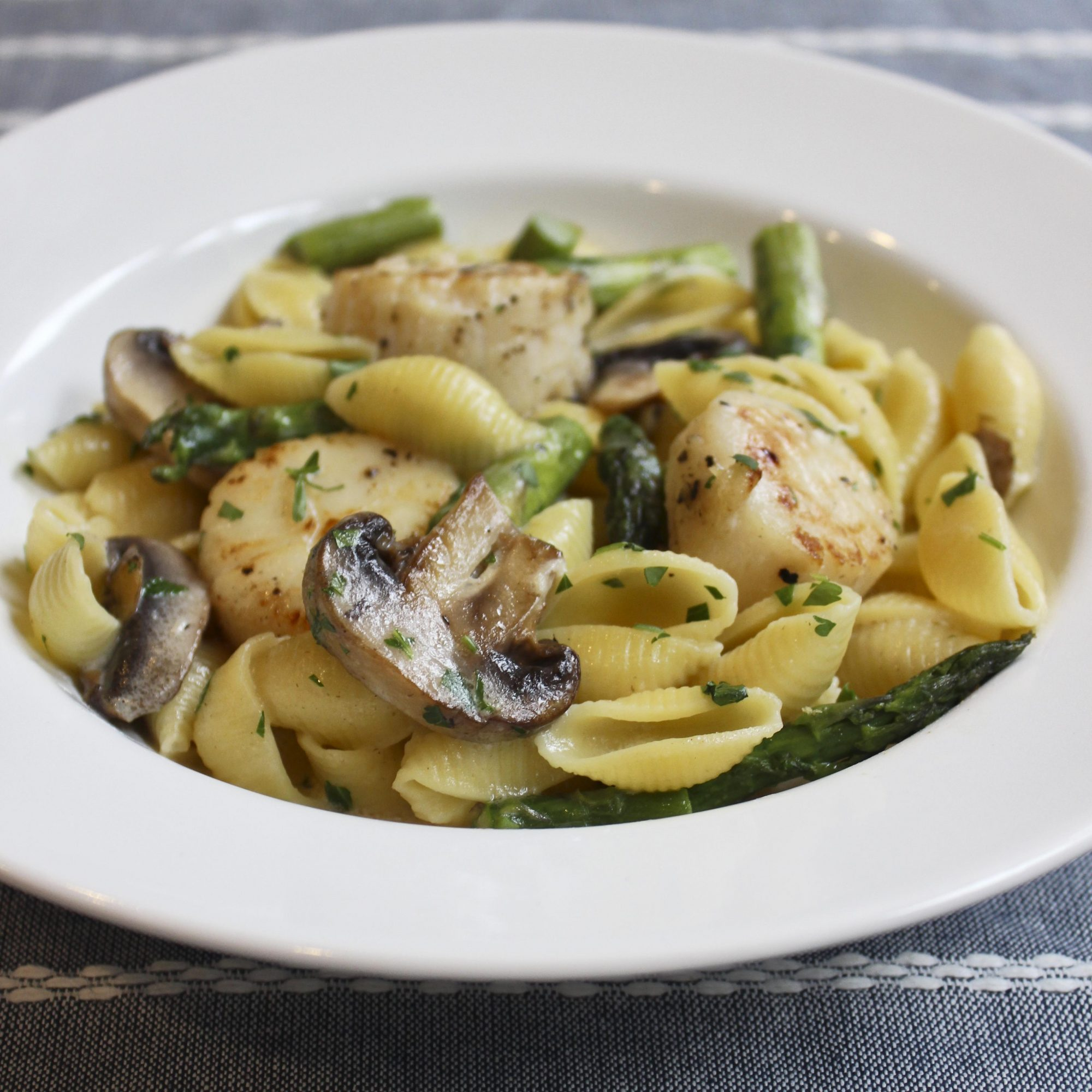 Wide rimmed white pasta bowl filled with shell pasta tossed with scallops, mushrooms, asparagus and topped with fresh herbs.