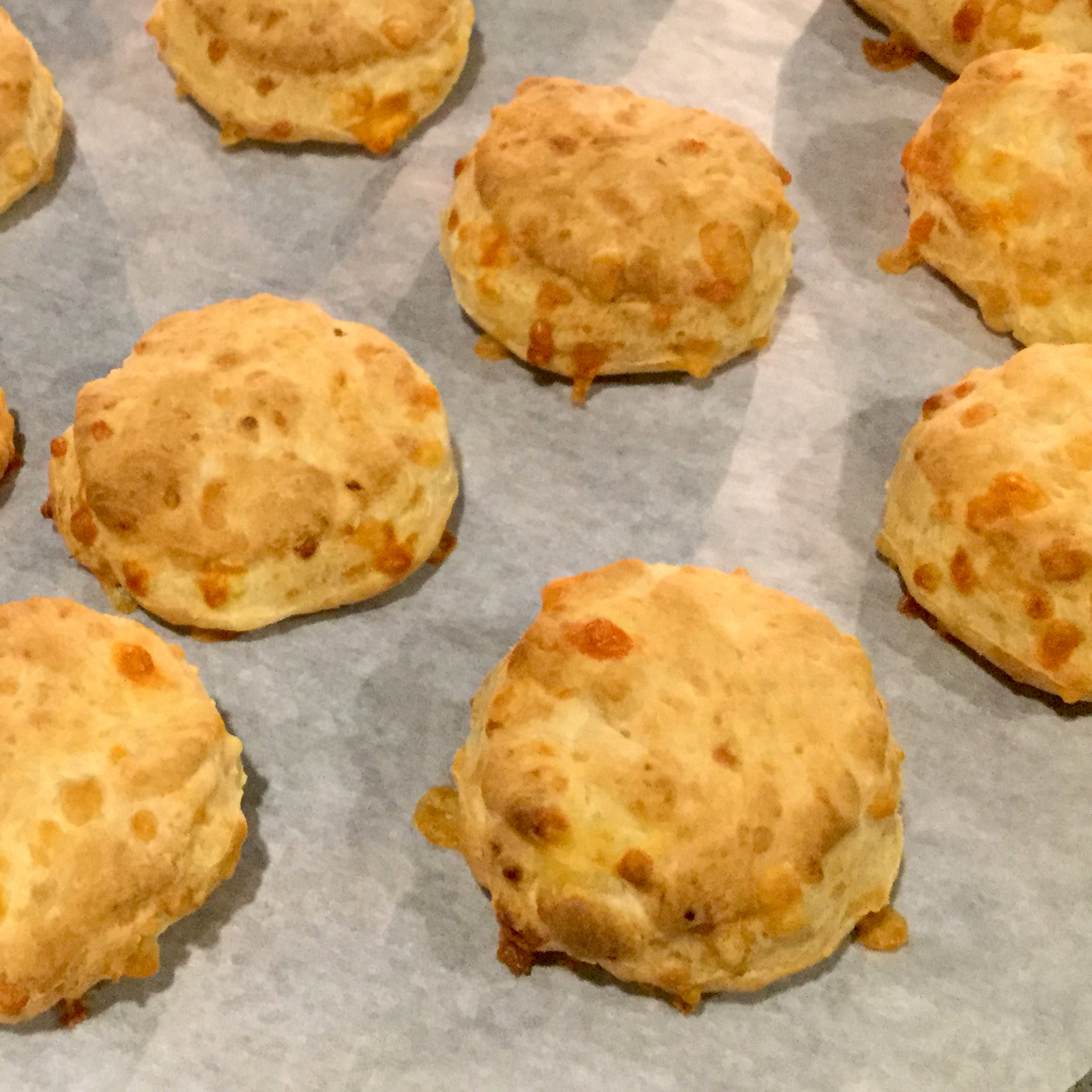 batch of biscuits