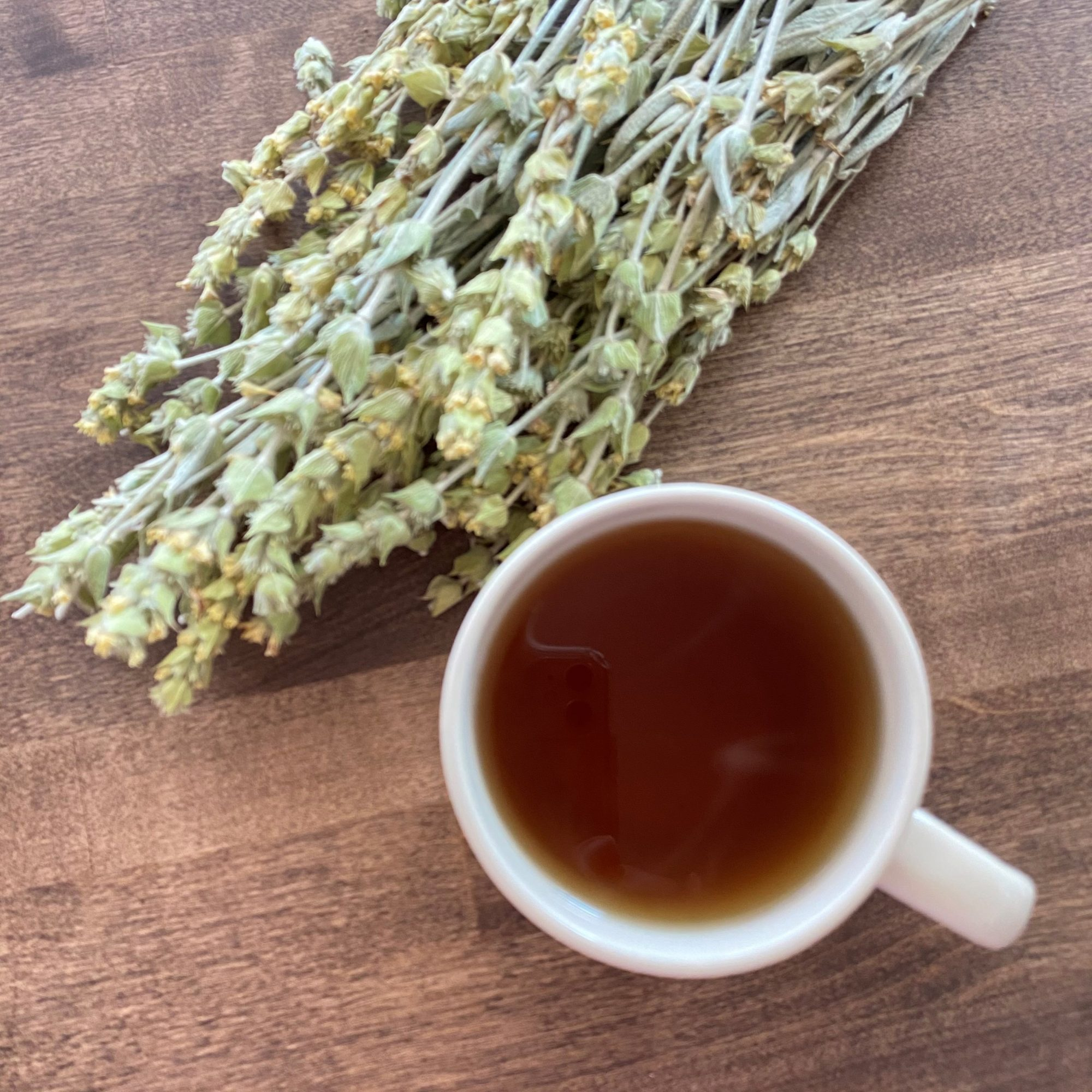 a mug of mountain tea with the dried flowers and stems of sideritis on the side