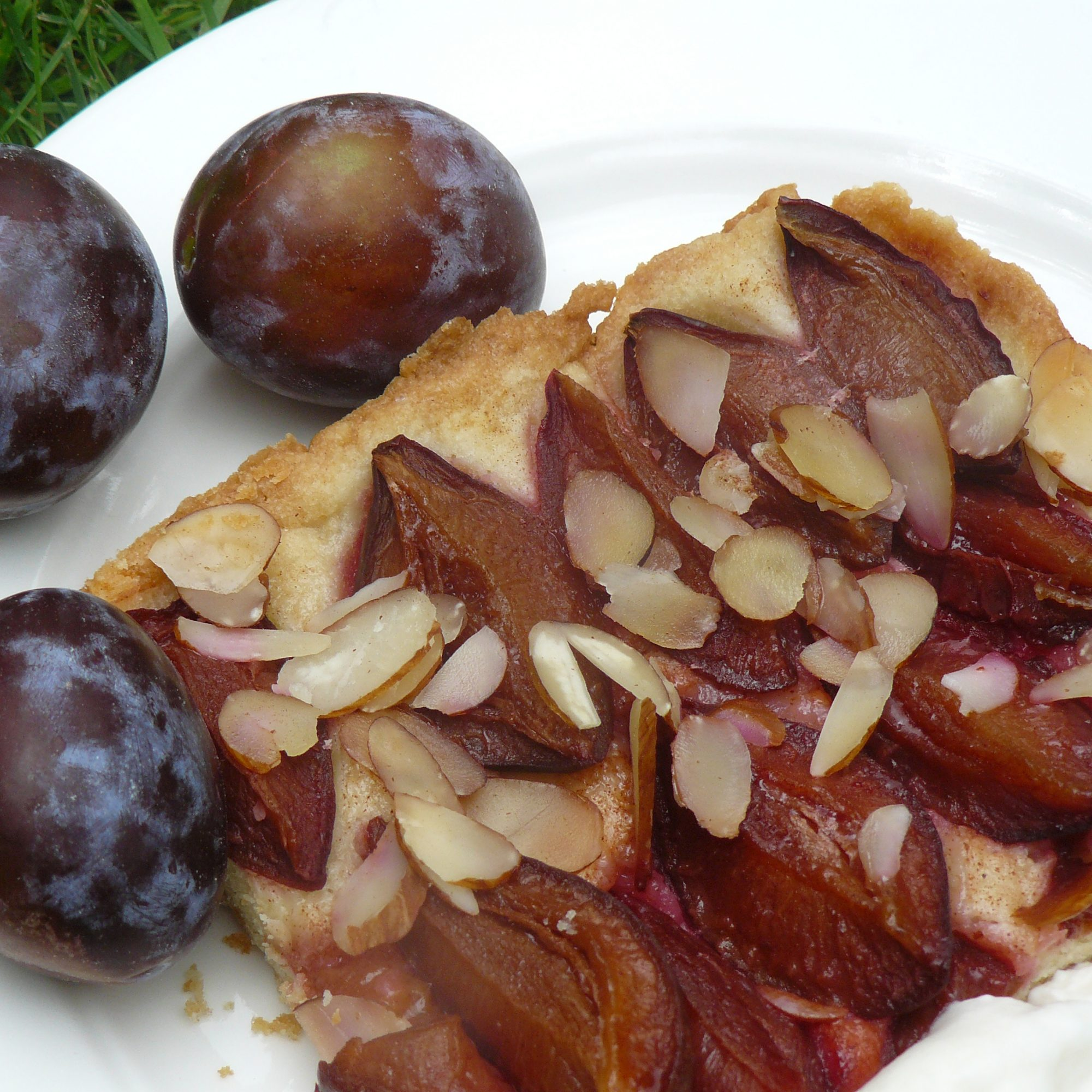 Zwetschgendatschi on a white plate with fresh plums