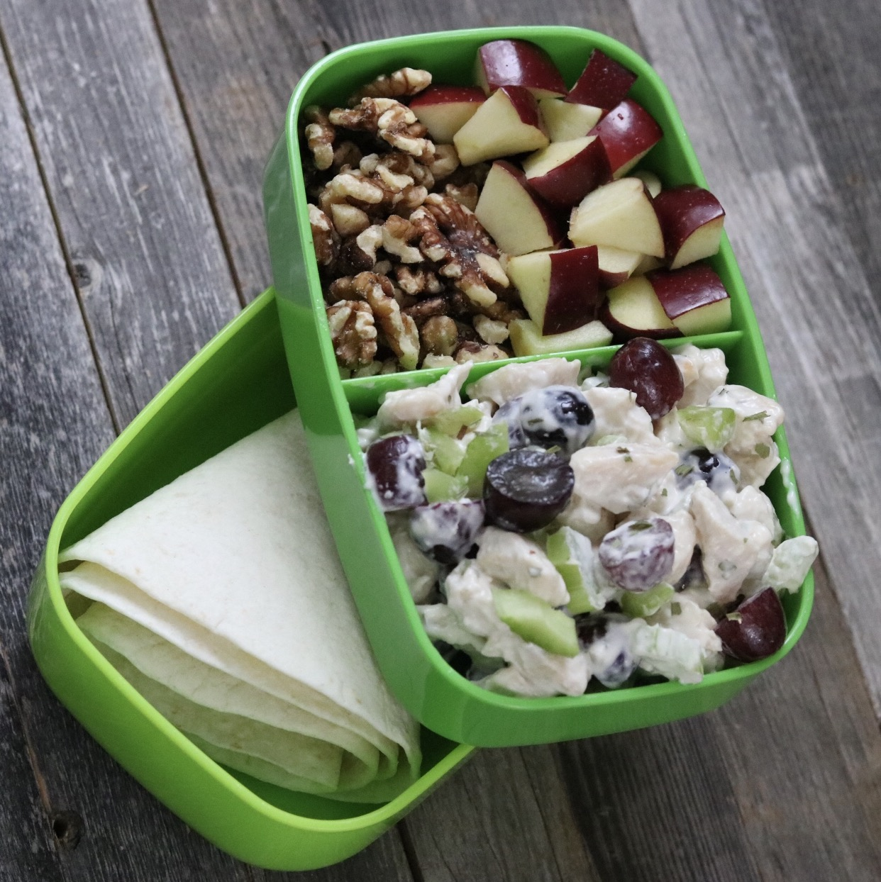 green bento boz with chicken salad, apples, and walnuts