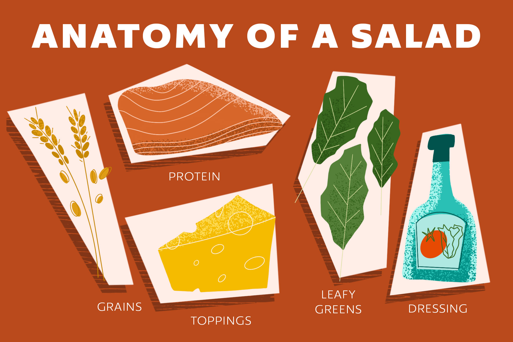 a graphic showing salad ingredients