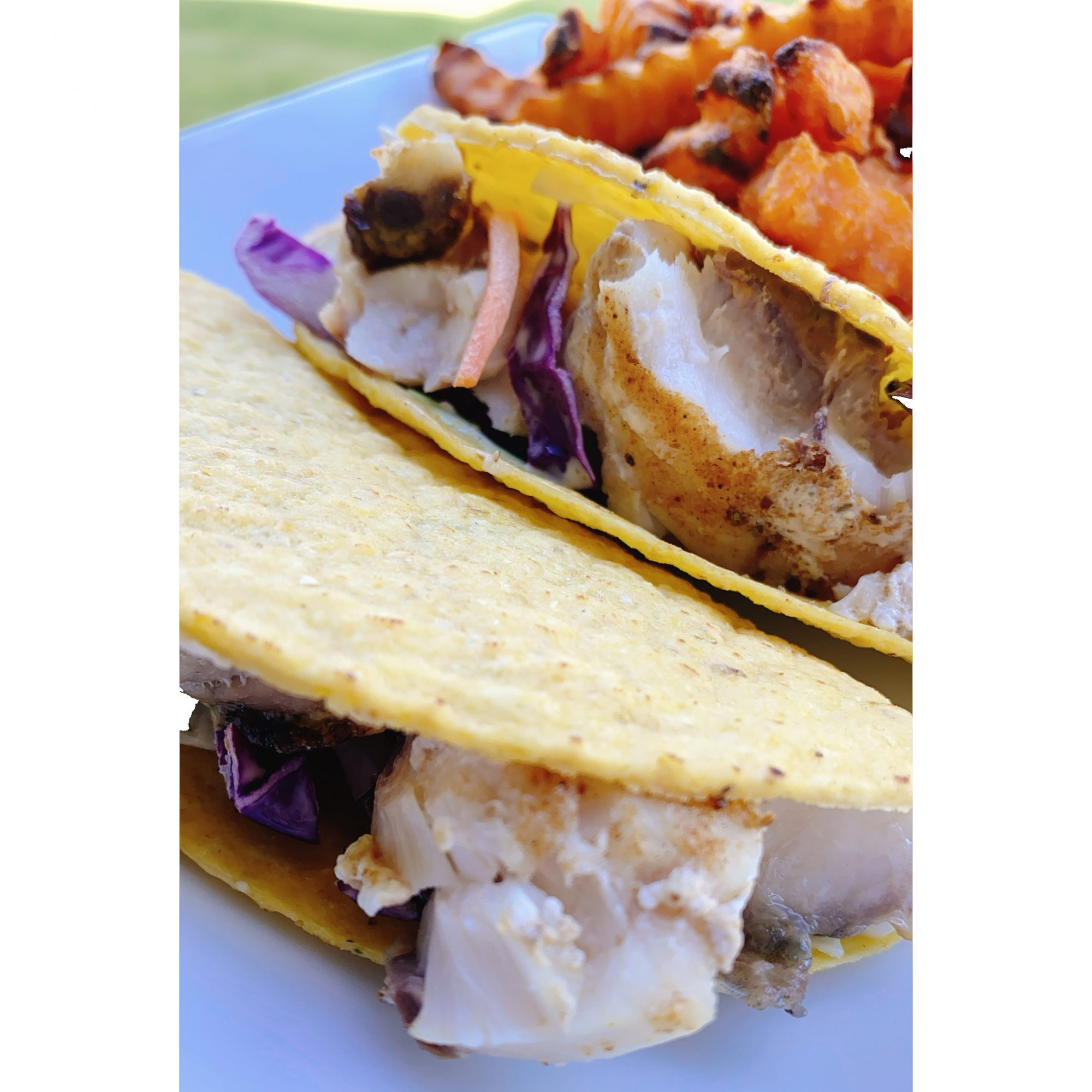 Rockfish Tacos on a white plate