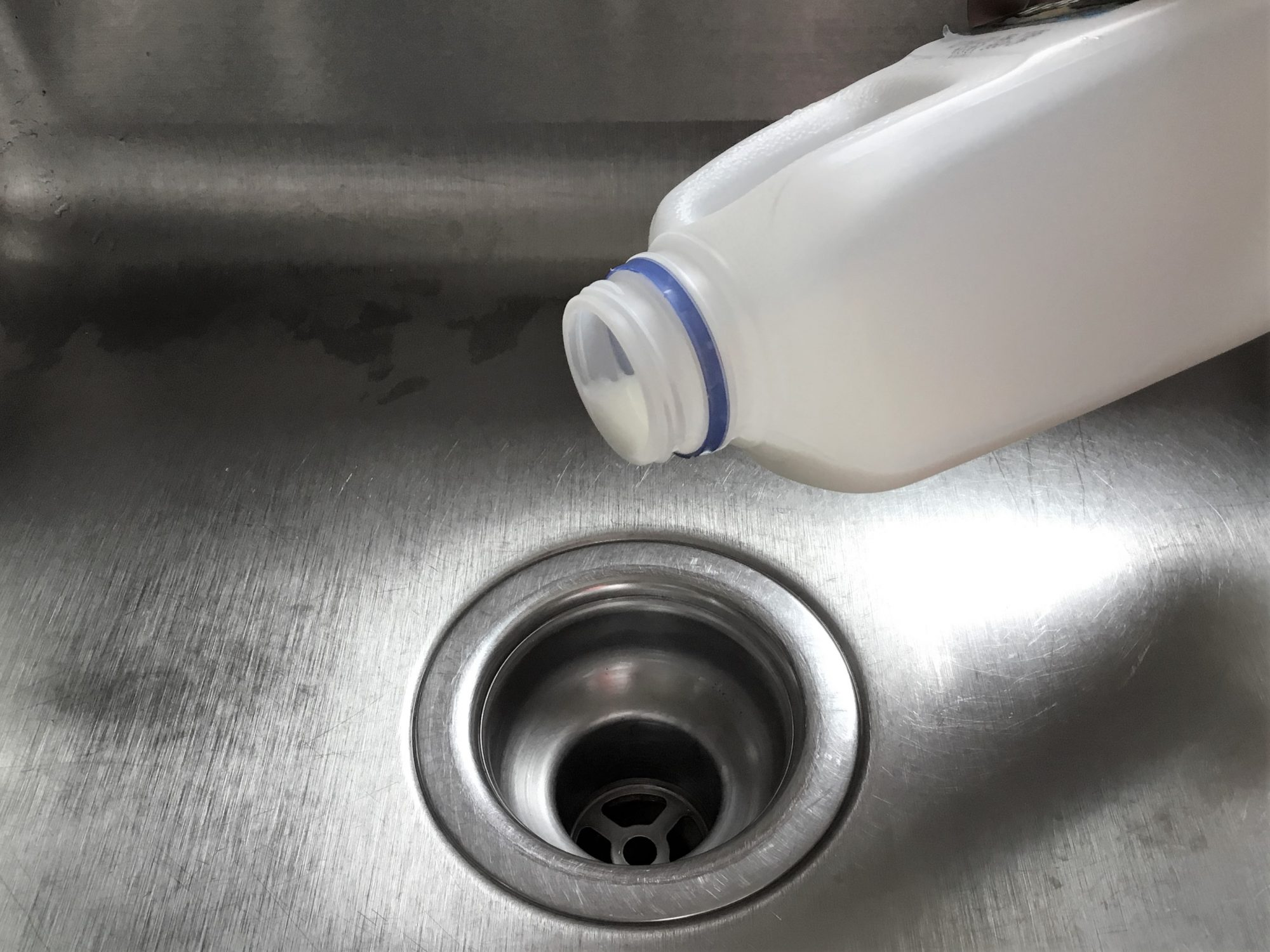 a jug of milk about to be poured down the drain of a stainless steel sink