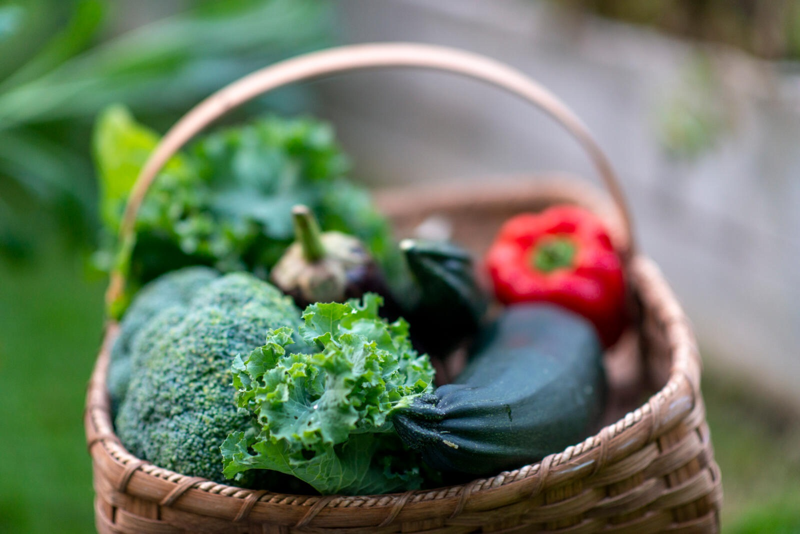 homegrown vegetables in a basket - broccoli, zucchini, eggplant, peppers, leafy greens
