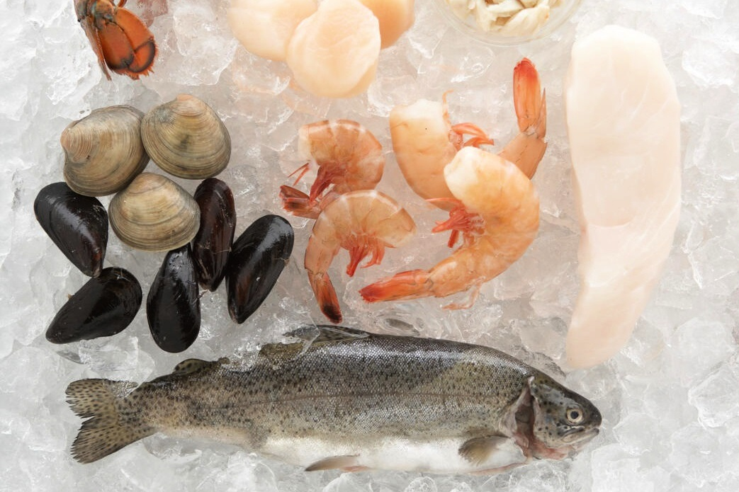 fresh fish, mussels, clams, shrimp, and scallops on ice