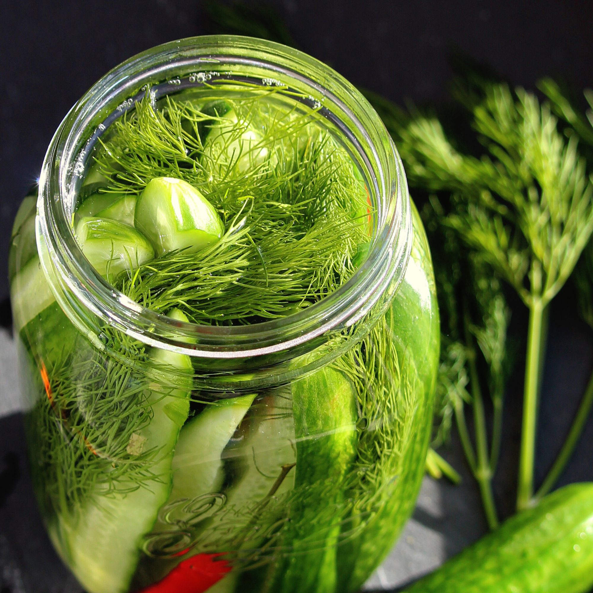 Fermented Kosher-Style Dill Pickles in a jar