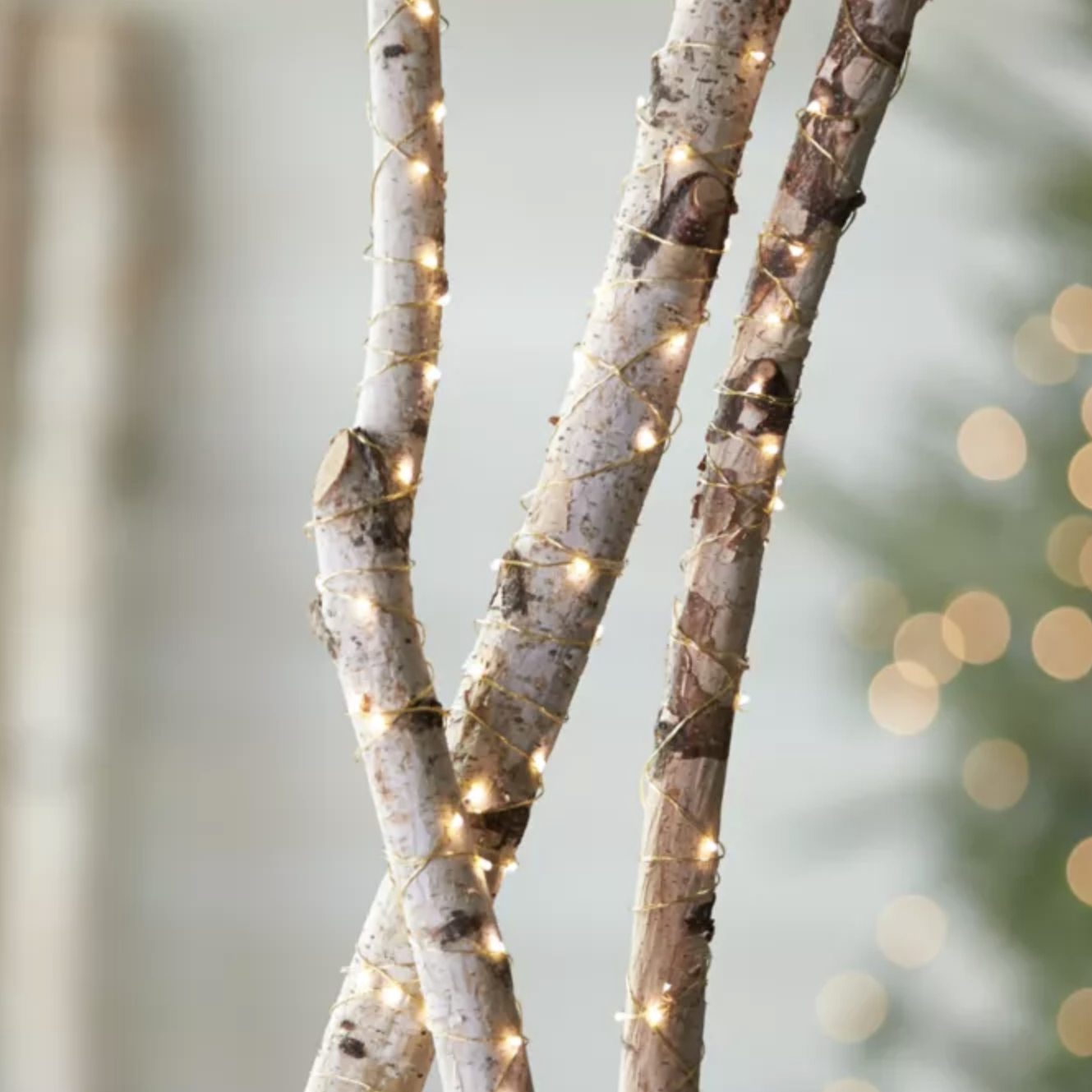 twinkle lights wrapped around tree