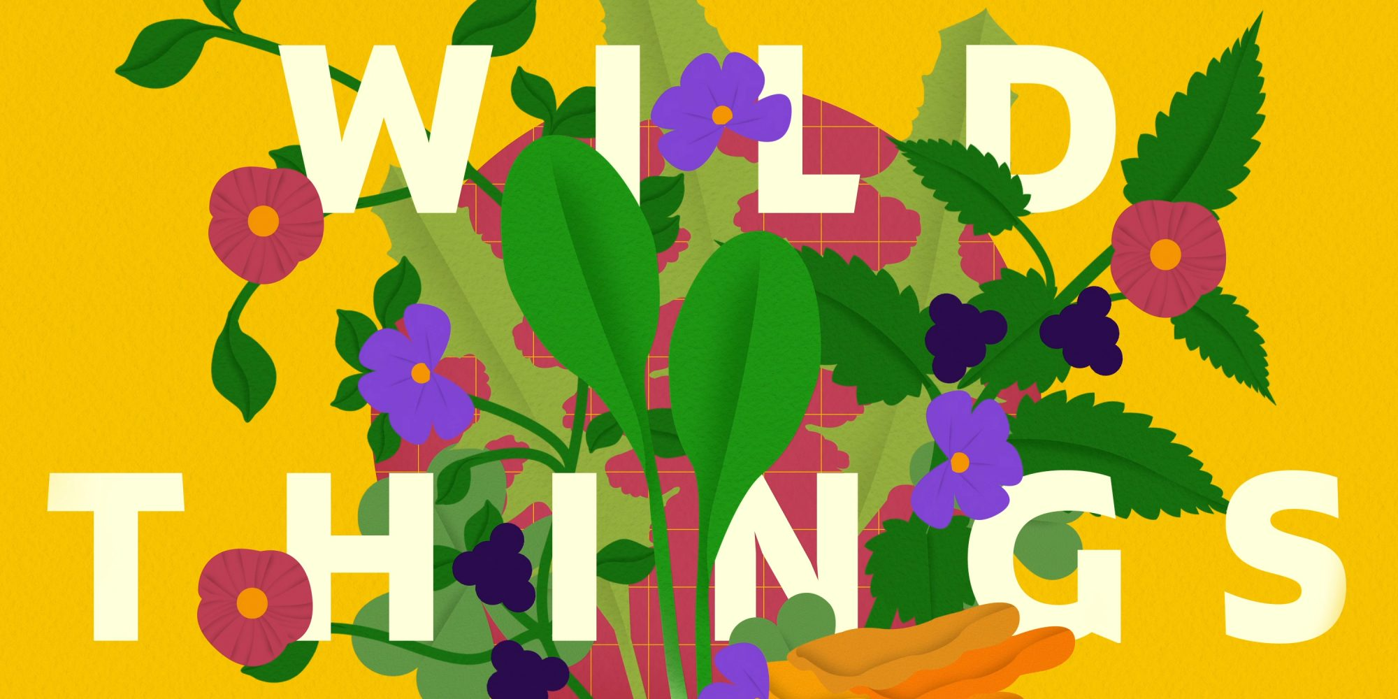Wild Things: Your Guide to Foraging Food