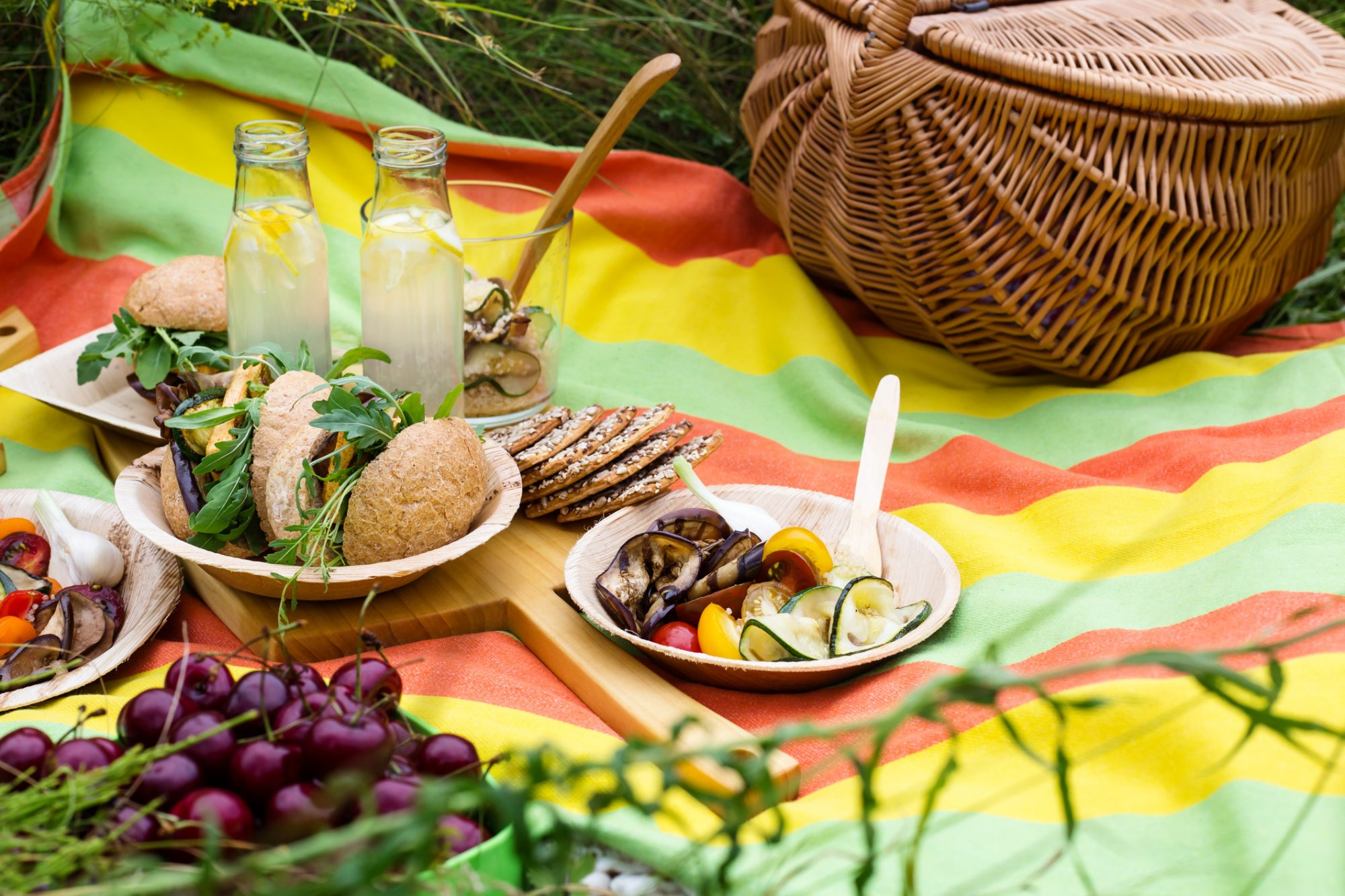 Picnic with fresh vegan dishes in summer park