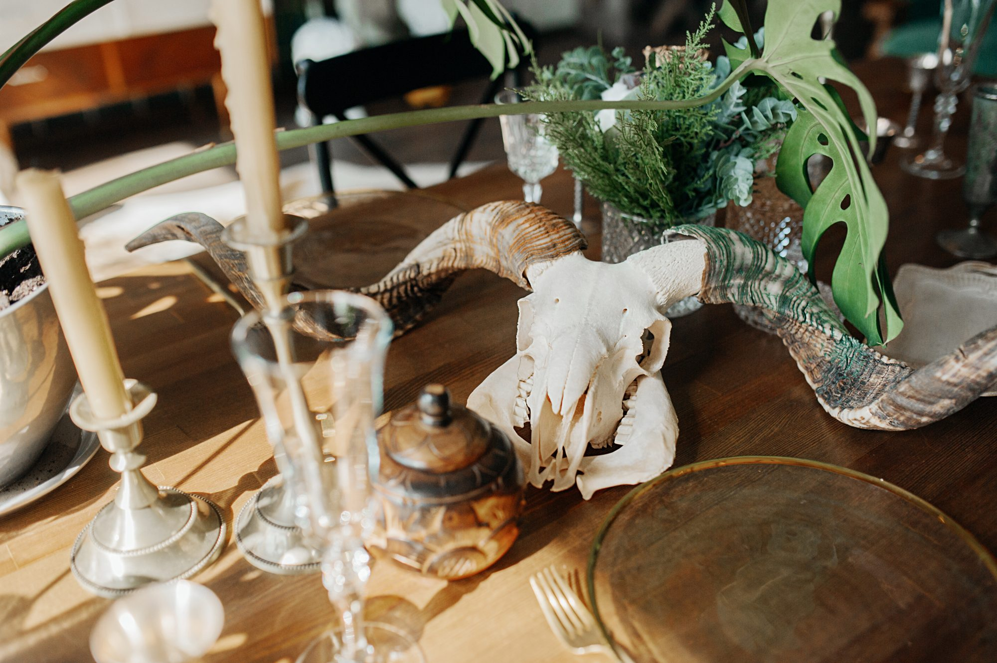 Table setting with a ram's skull