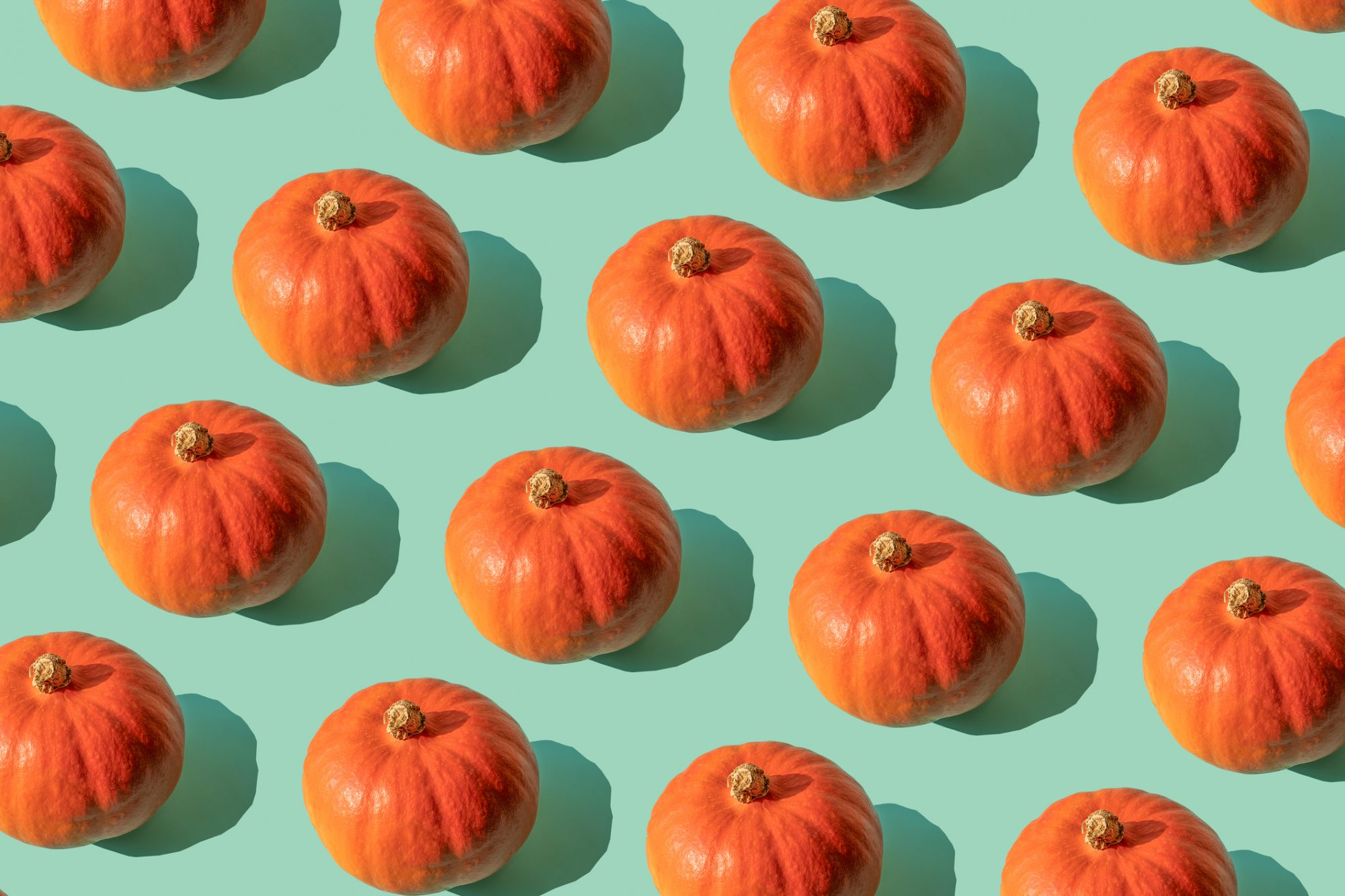 Canned Pumpkin Actually Is Pumpkin, but Not the Kind You Carve
