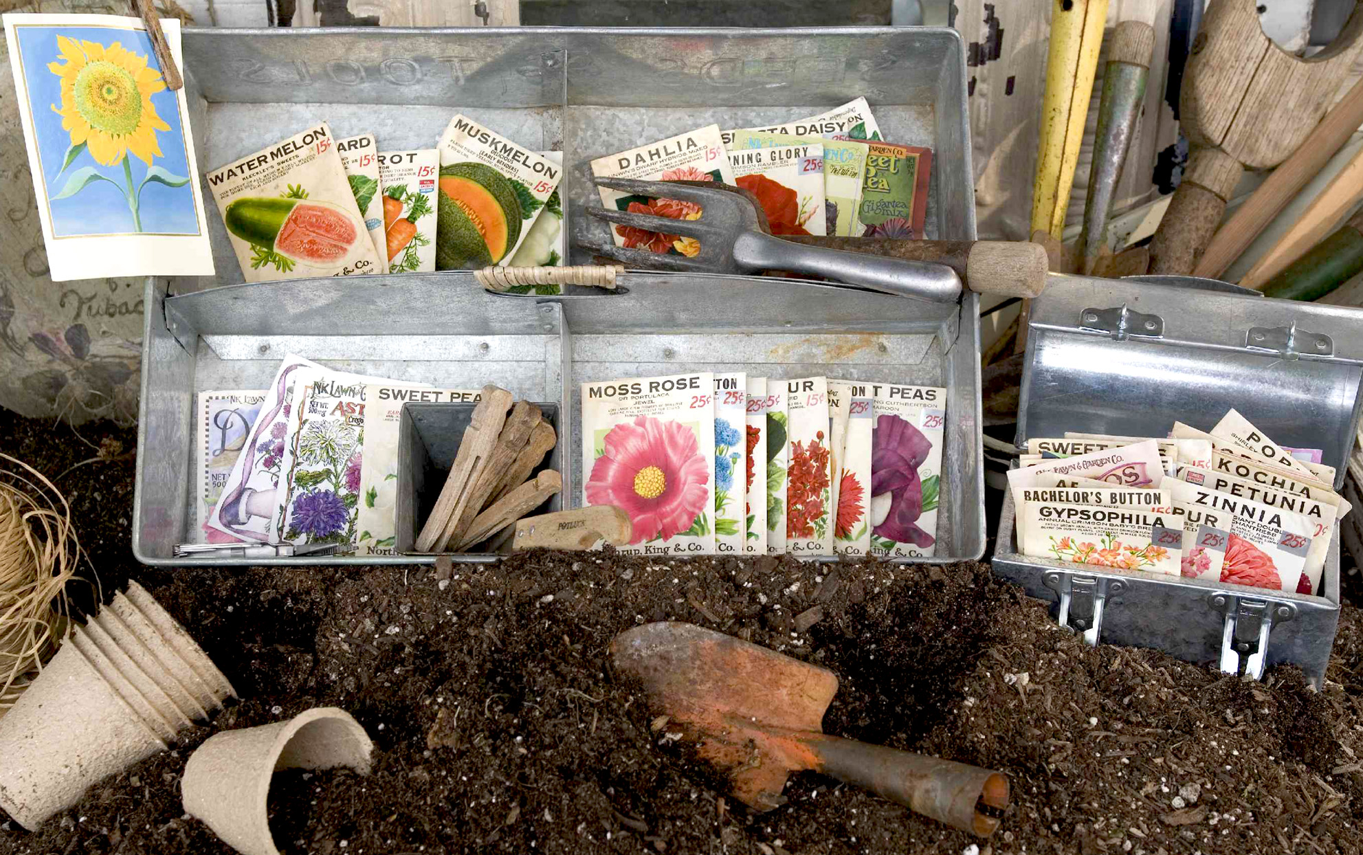Metal containers with seed packets and garden tools