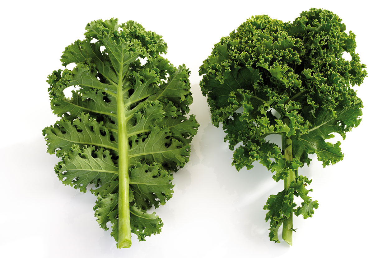 Curly-Kale