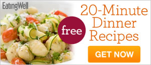 20 minute dinner recipes