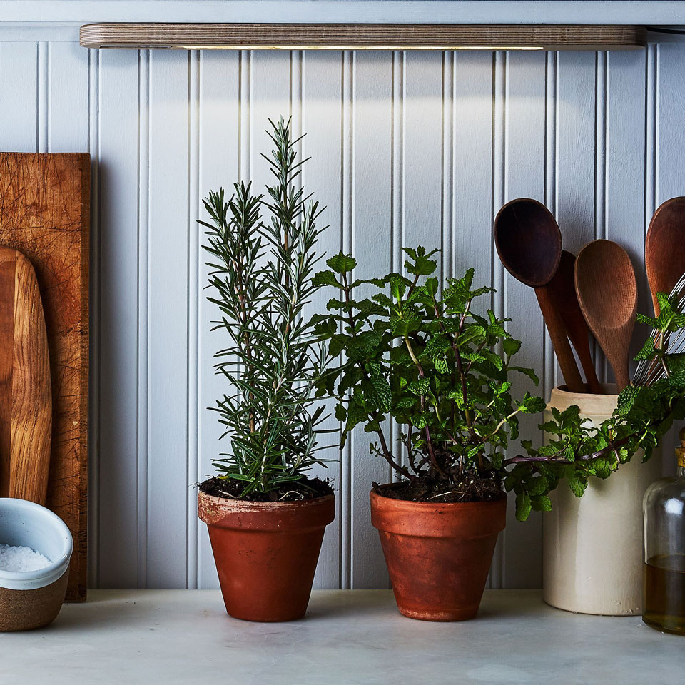 How To Plant An Indoor Herb Garden Eatingwell