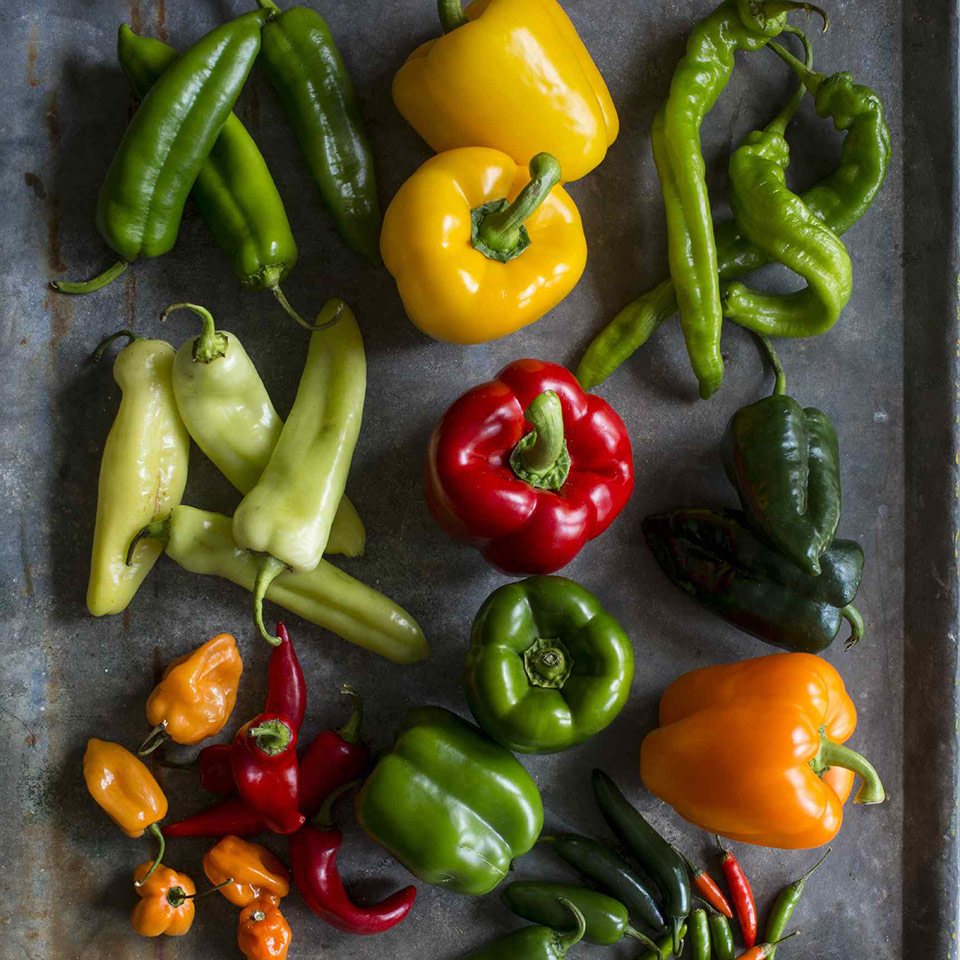 varieties of sweet & hot peppers