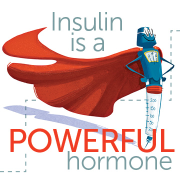 Learn How Insulin Works