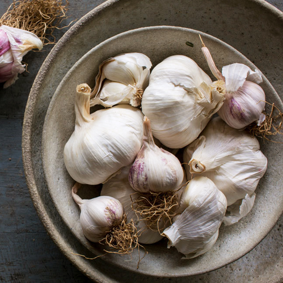 garlic bulbs in bowl