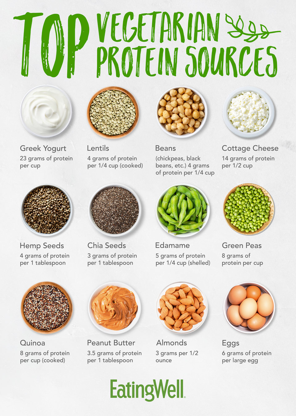vegetarian protein infographic