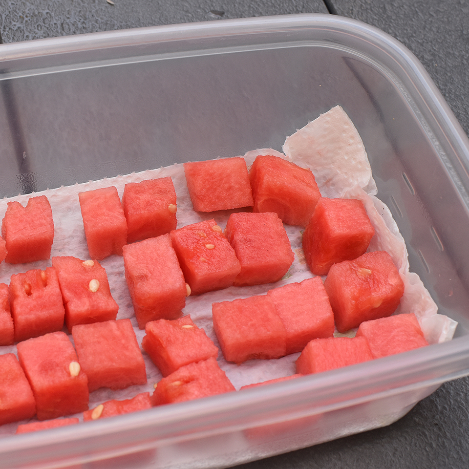 Cubed watermelon in plastic storage container.