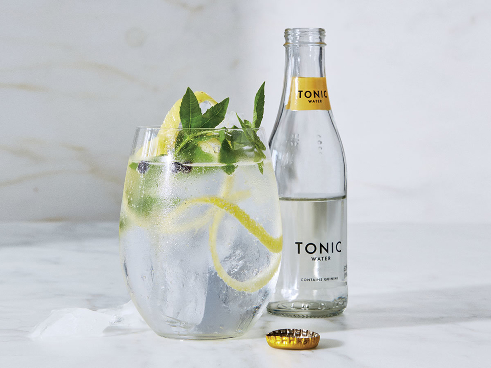 Gin and Tonic cocktail in a glass