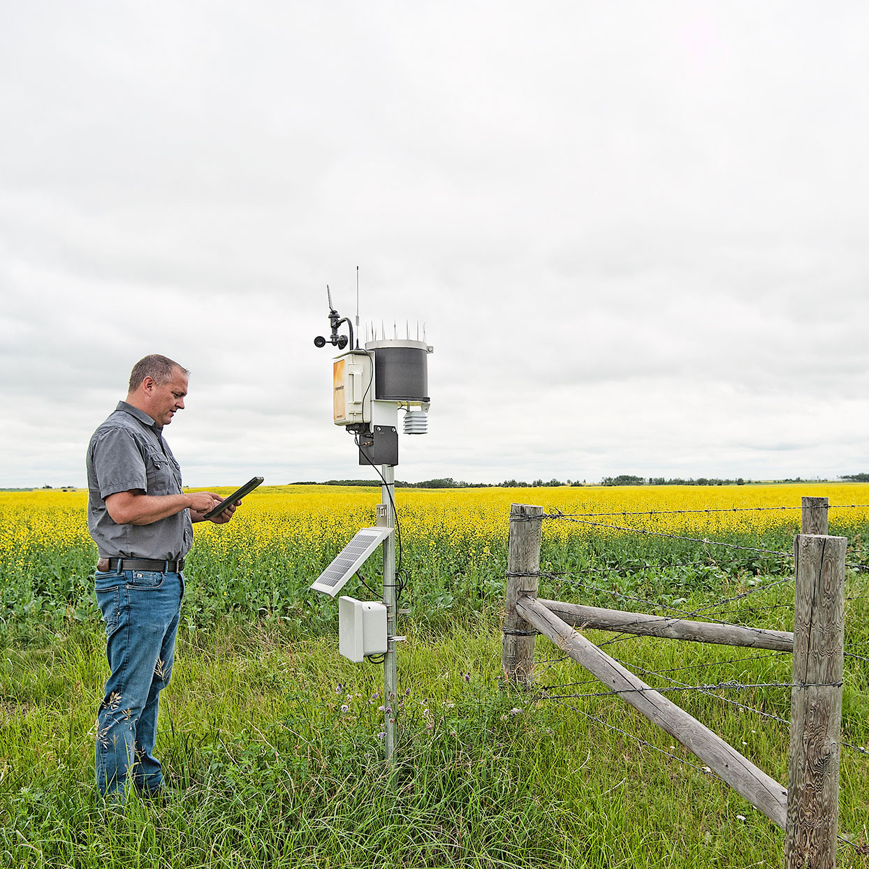 Trevor Scherman analyzing weather station on farm