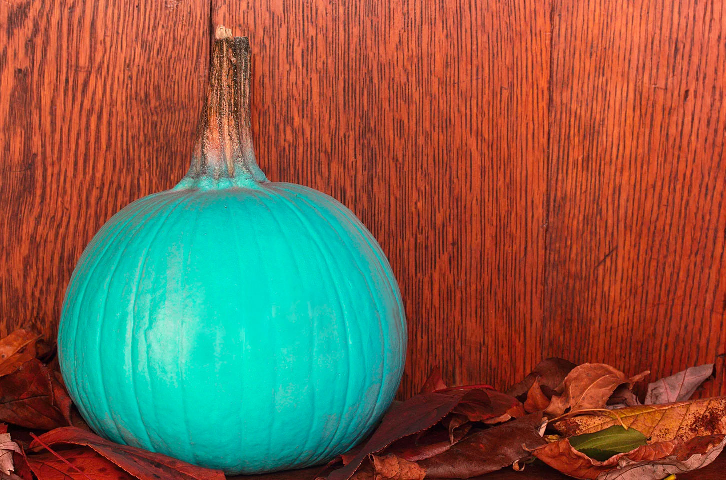 Teal Pumpkin on a pile of leaves