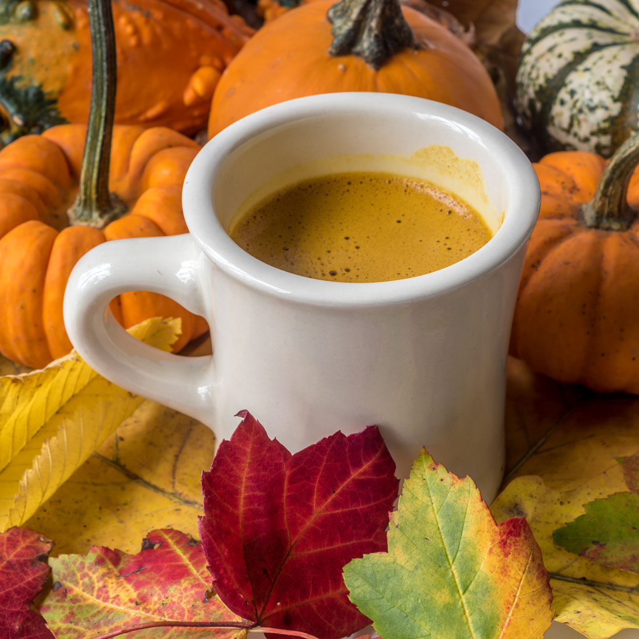 mug of creamy coffee with pumpkins and fall leaves around