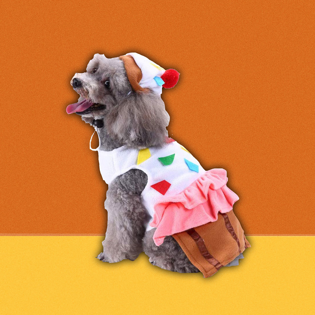 dog wearing a cupcake costume