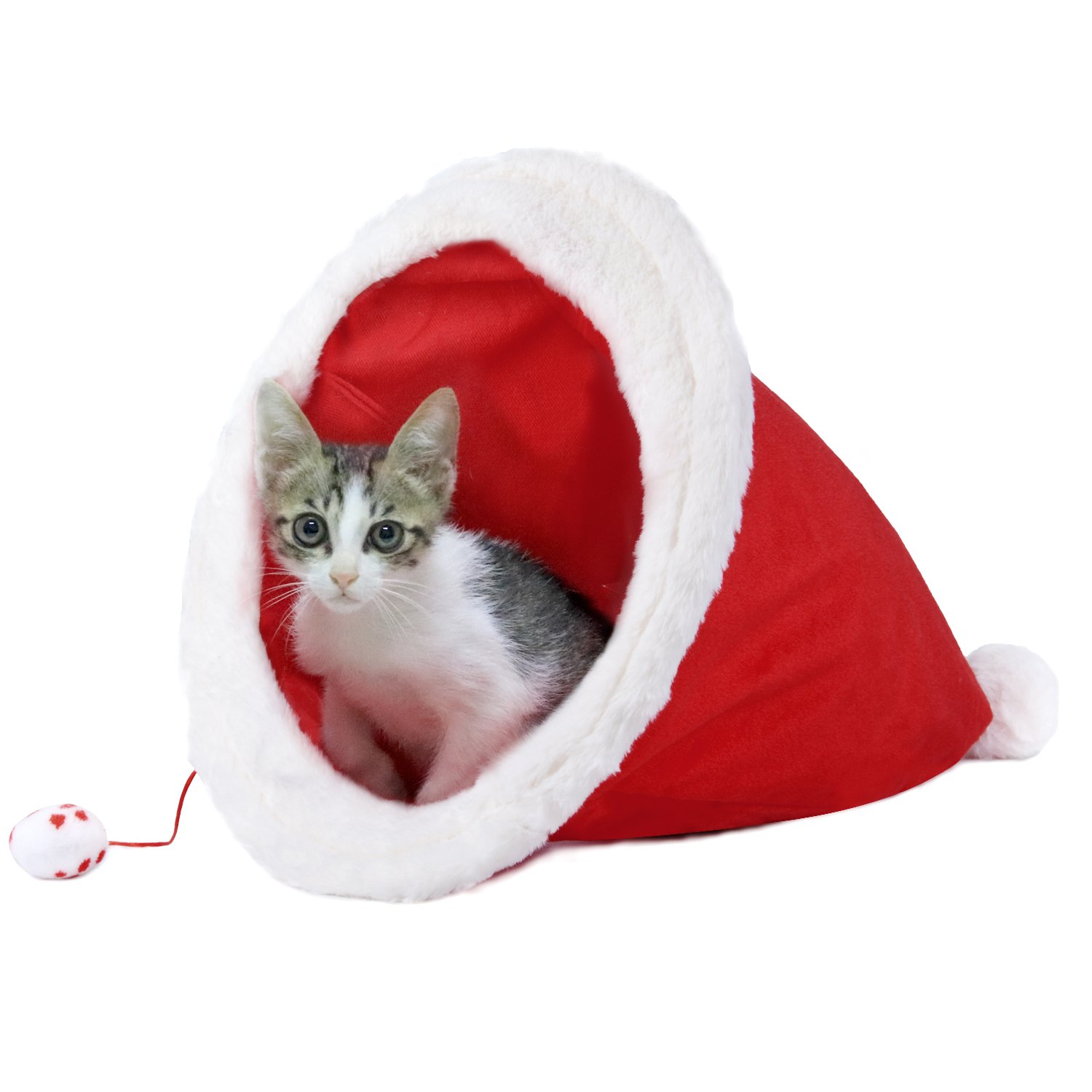 small cat inside of a cat bed in the shape of a santa hat