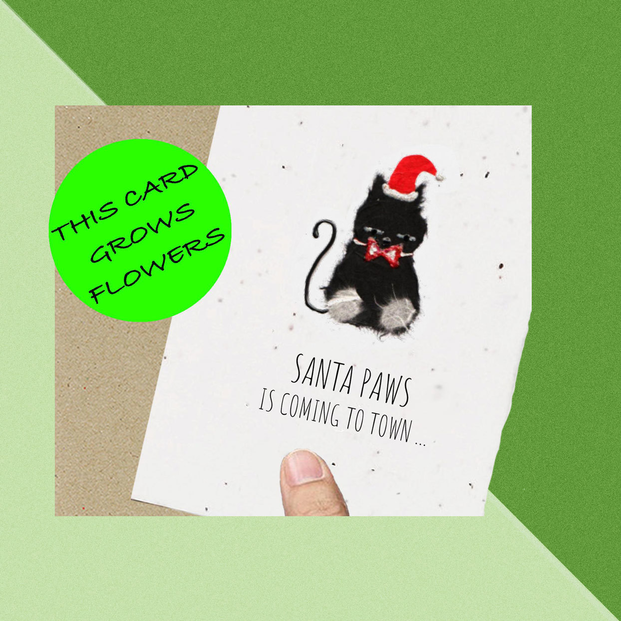 Plantable Greeting Card on Green Background