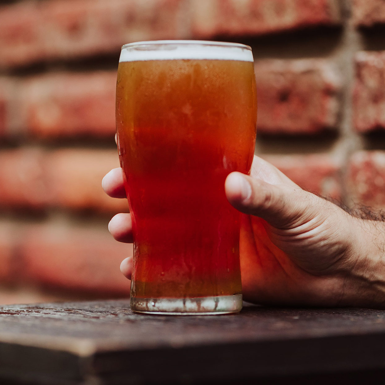 A Brooklyn Man Registered His Beer as an Emotional Support Animal