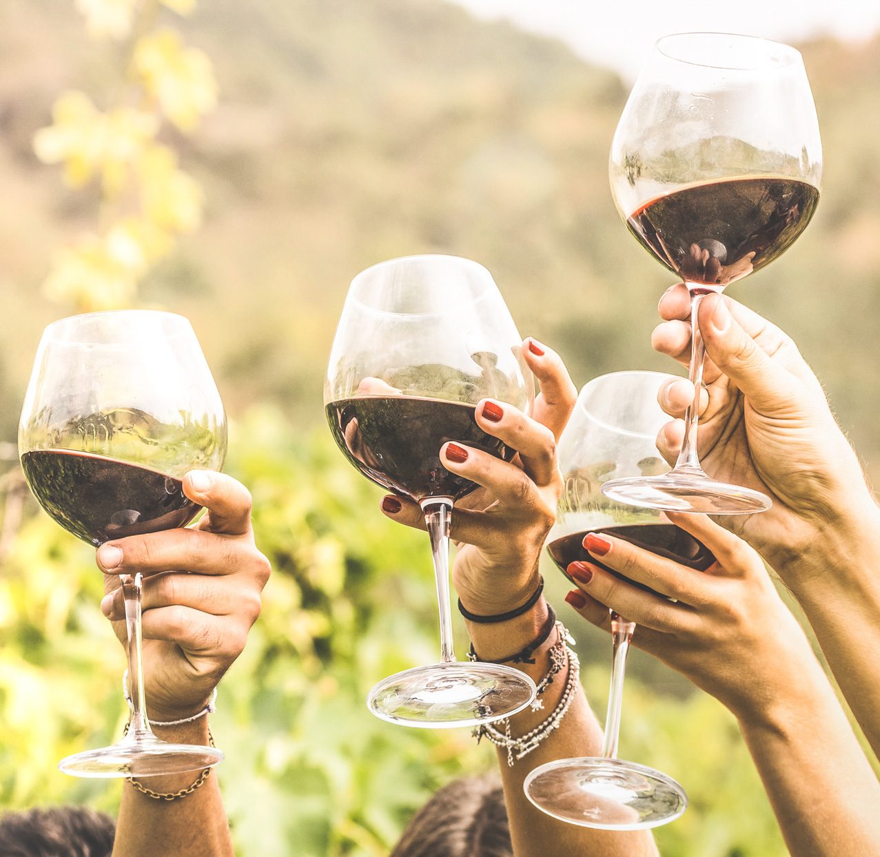 several hands holding up glasses of wine outdoors