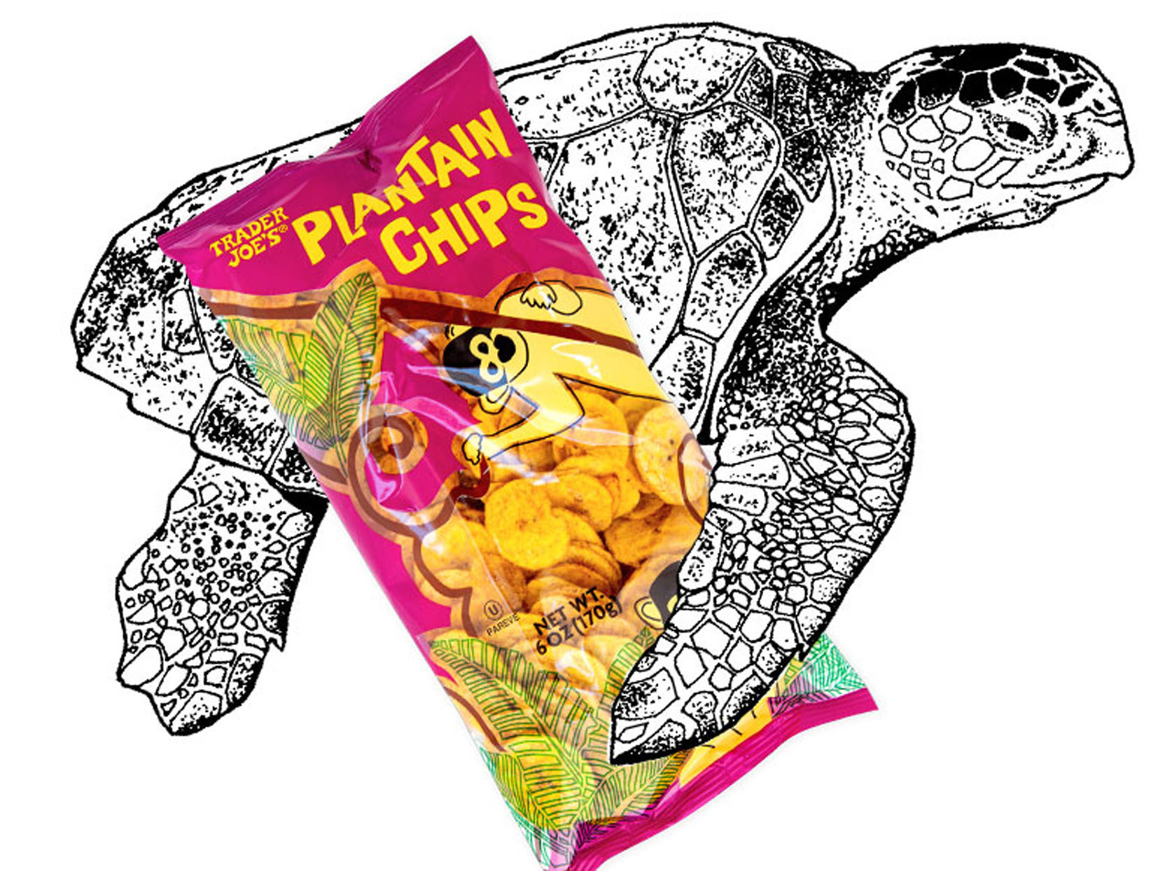trader joe's plantain chips