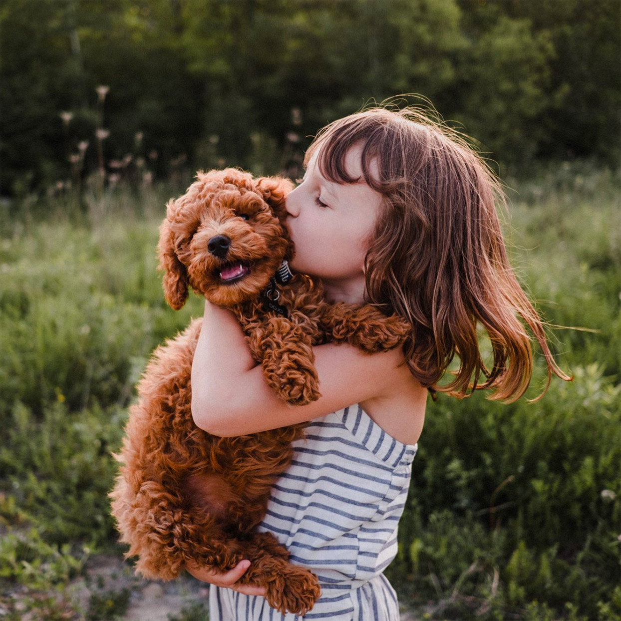 Growing Up With a Dog Can Improve Children's Health and Happiness, Studies Find