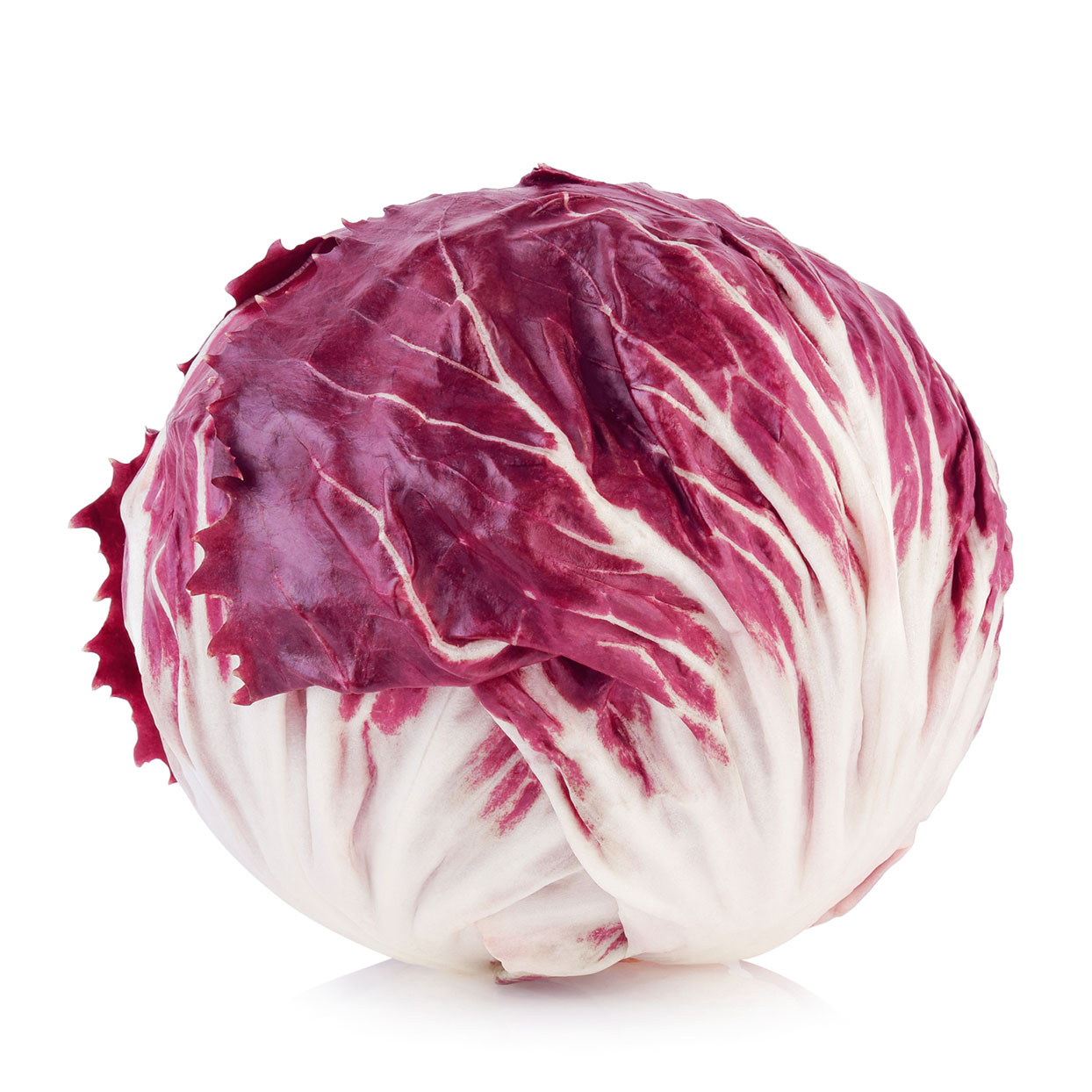 Close-Up Of Radicchio Against White Background