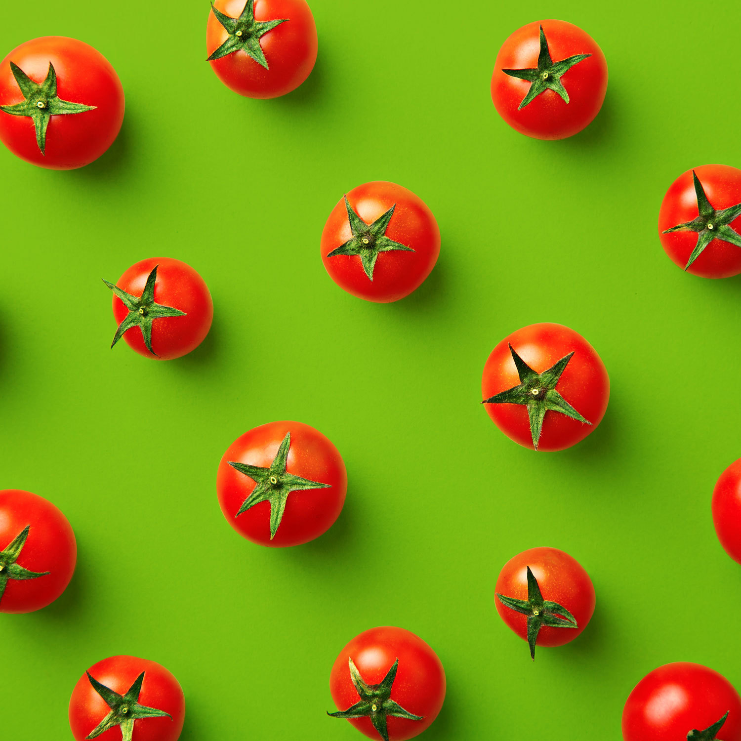 Red tomatoes on a green background