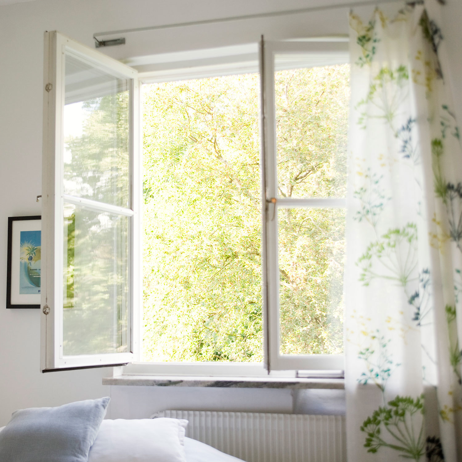 photo of open window with tree outside