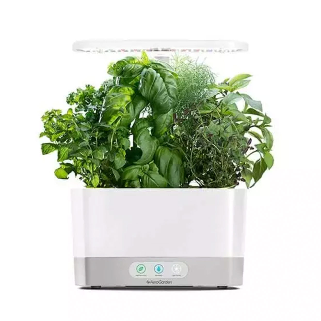 aerogarden indoor grower with mixed herbs